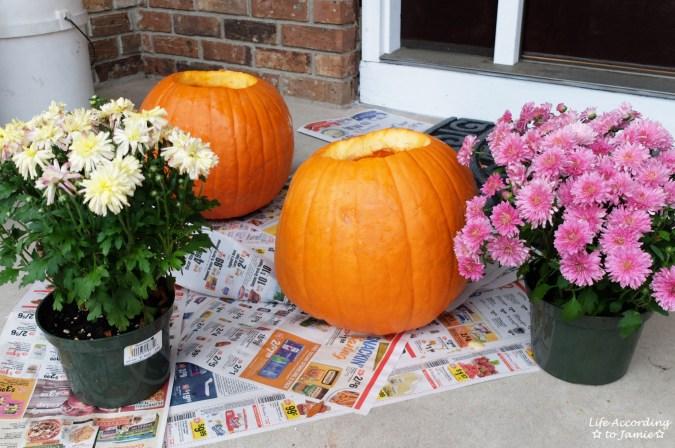 Pumpkins + Mums