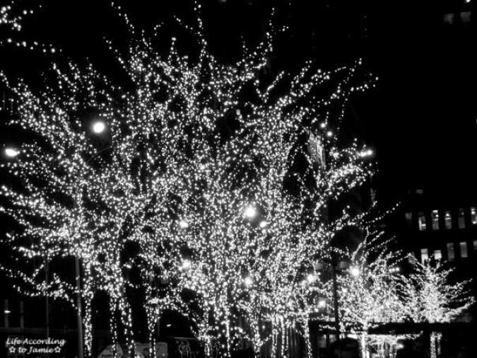 B&W Christmas Lights in Trees