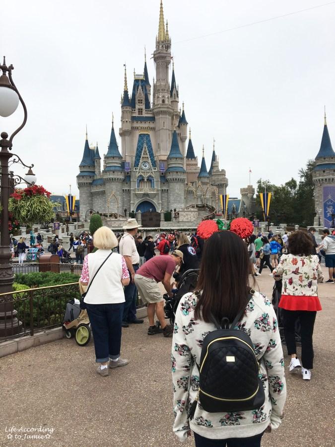 Cinderella Castle - Christmas Minnie Ears