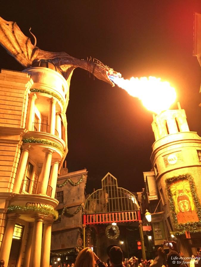 Universal Studios Orlando - Wizarding World of Harry Potter - Dragon 1