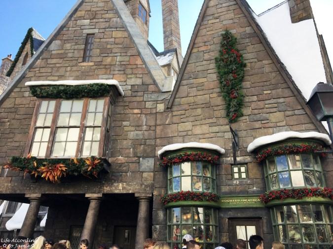 Universal Studios Orlando - Wizarding World of Harry Potter - Hogsmeade 10