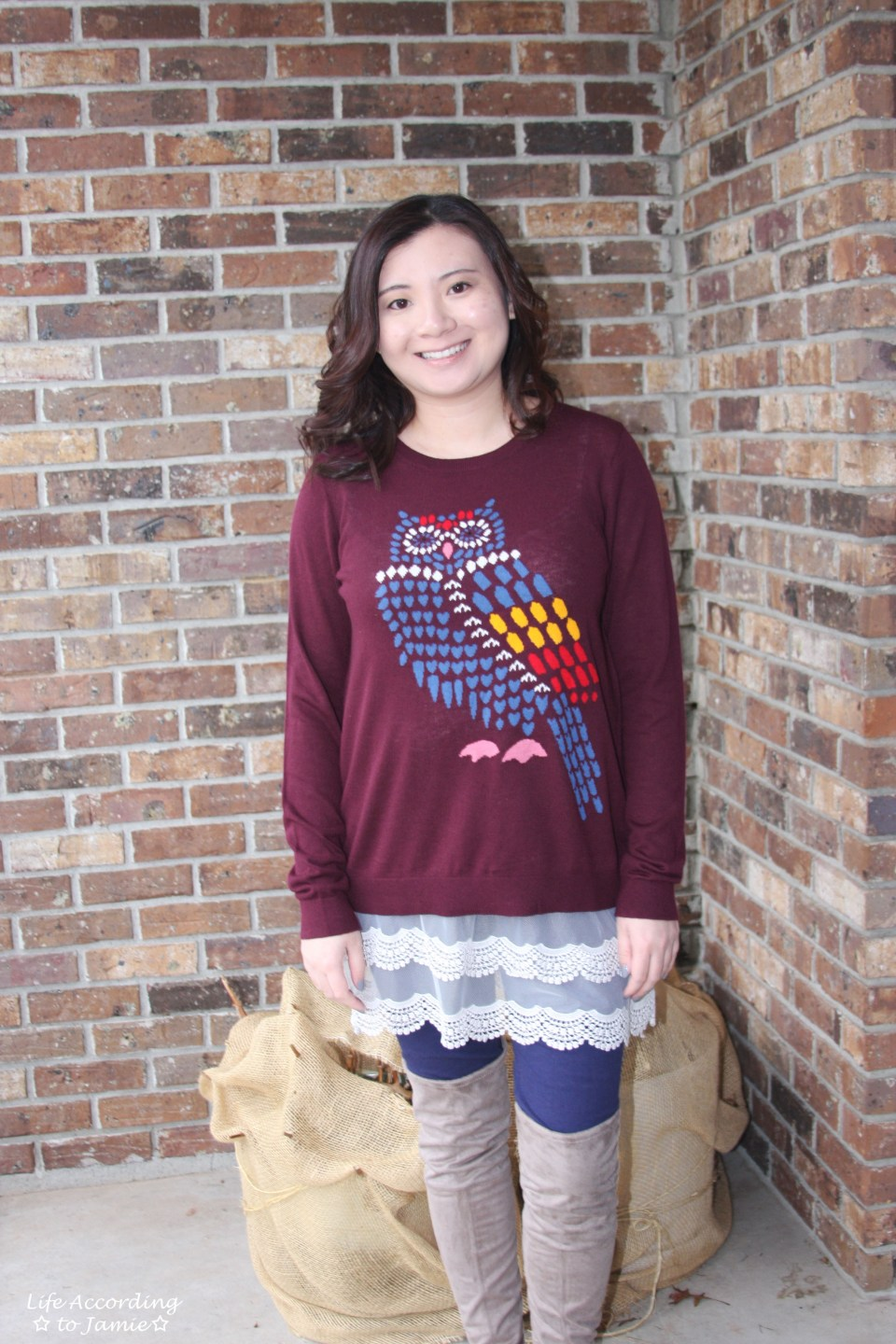 Owl Sweater + Lace Extender 8