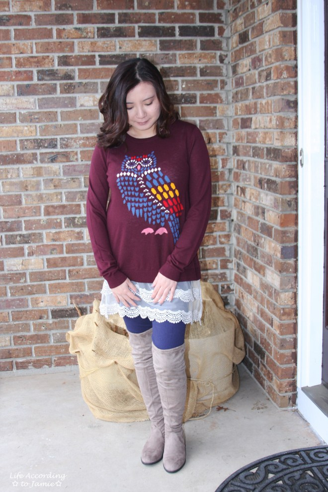 Owl Sweater + Lace Extender 9