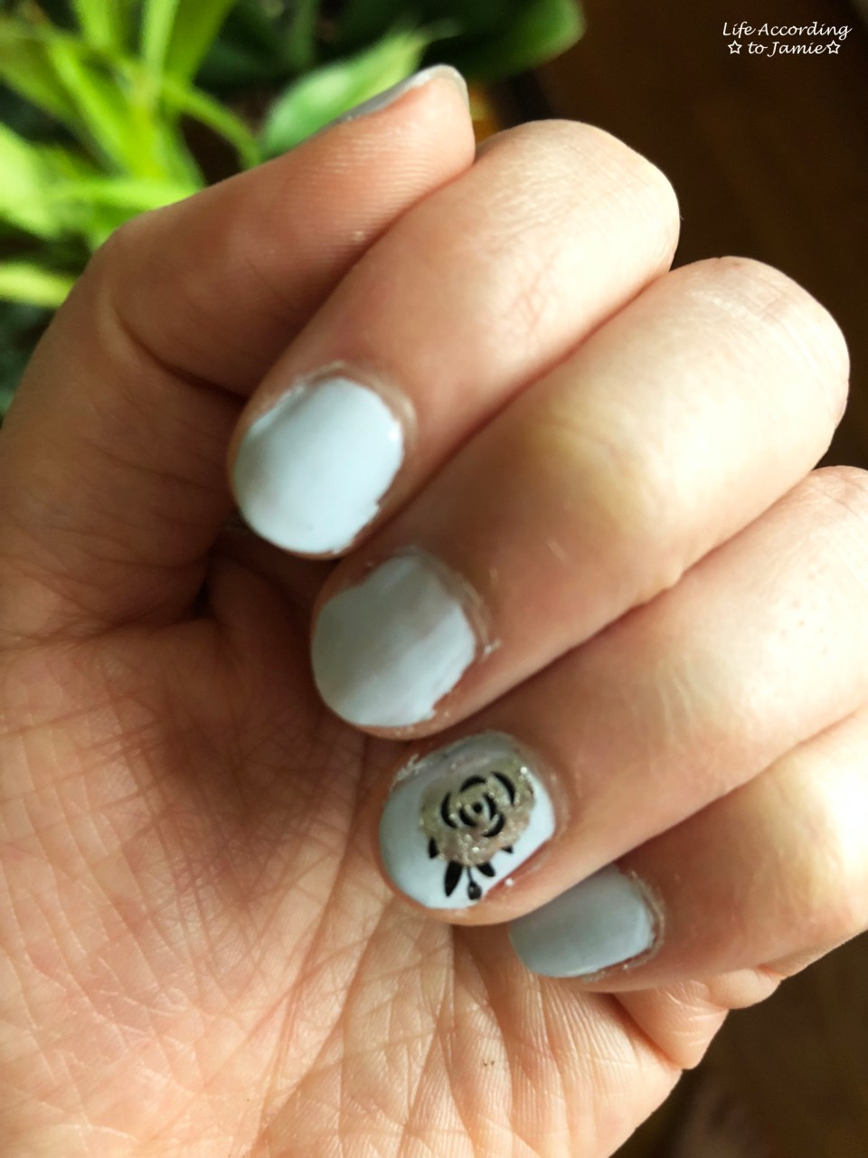Nails - Silver Rose 2