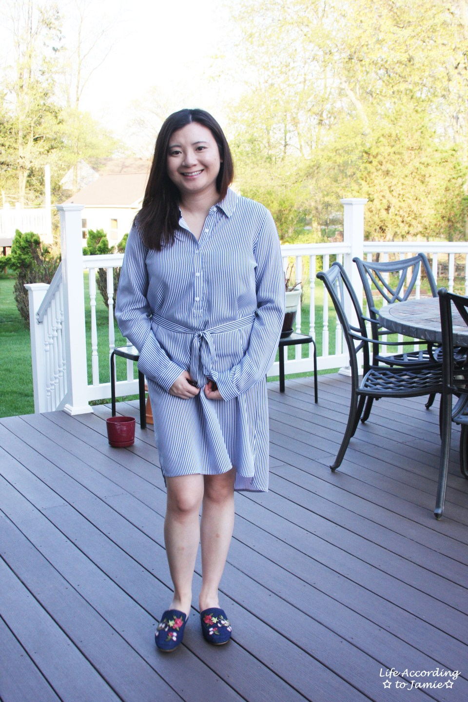 Pinstripe Shirt Dress 3