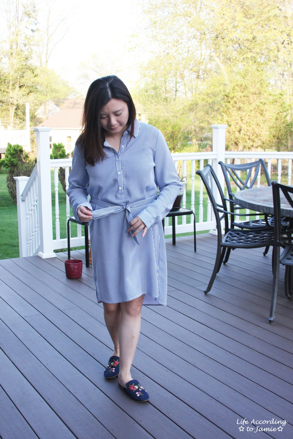 Pinstripe Shirt Dress 4