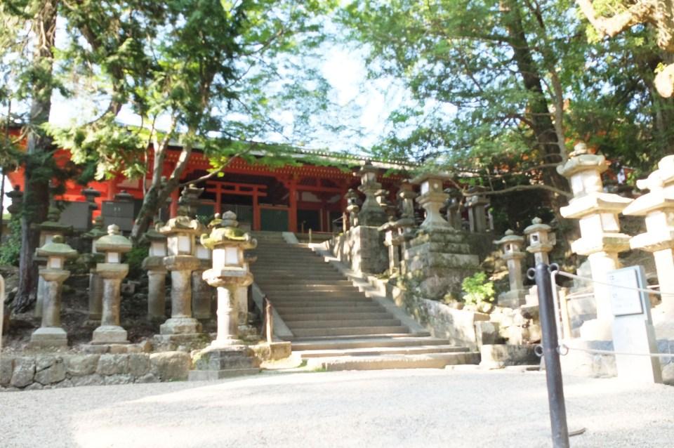 Kasuga Taisha Shrine 2