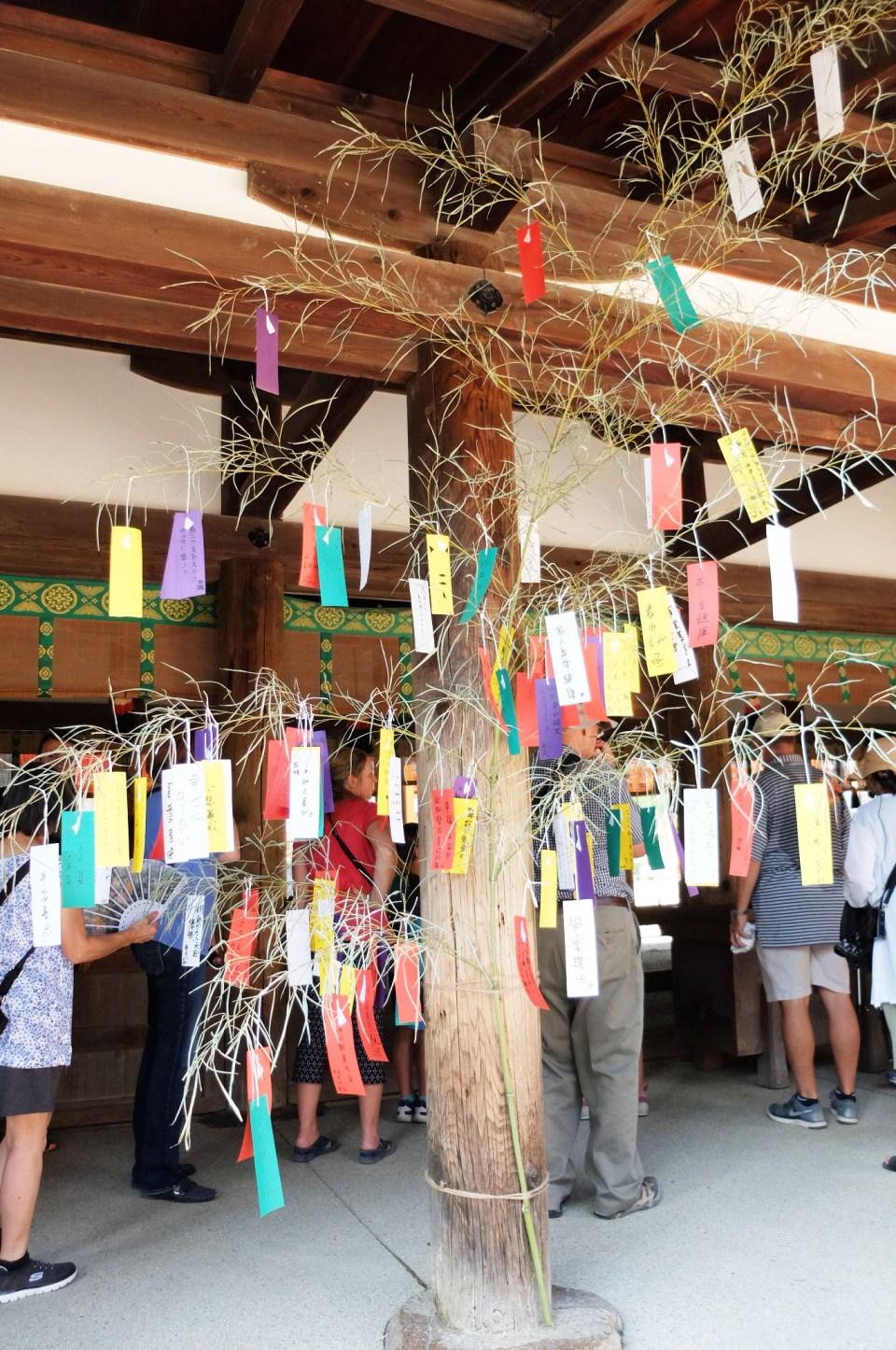 Kasuga Taisha Shrine 4