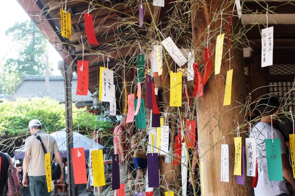Kasuga Taisha Shrine 6