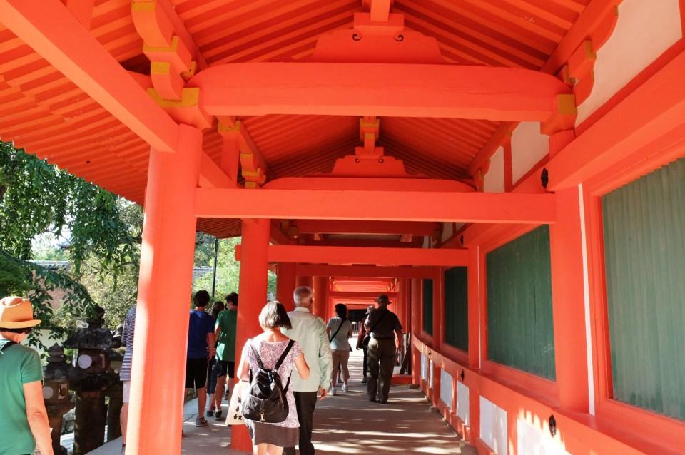 Kasuga Taisha Shrine 8