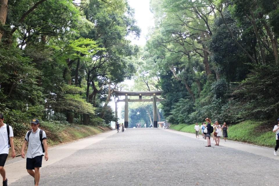 Meiji Shrine 3