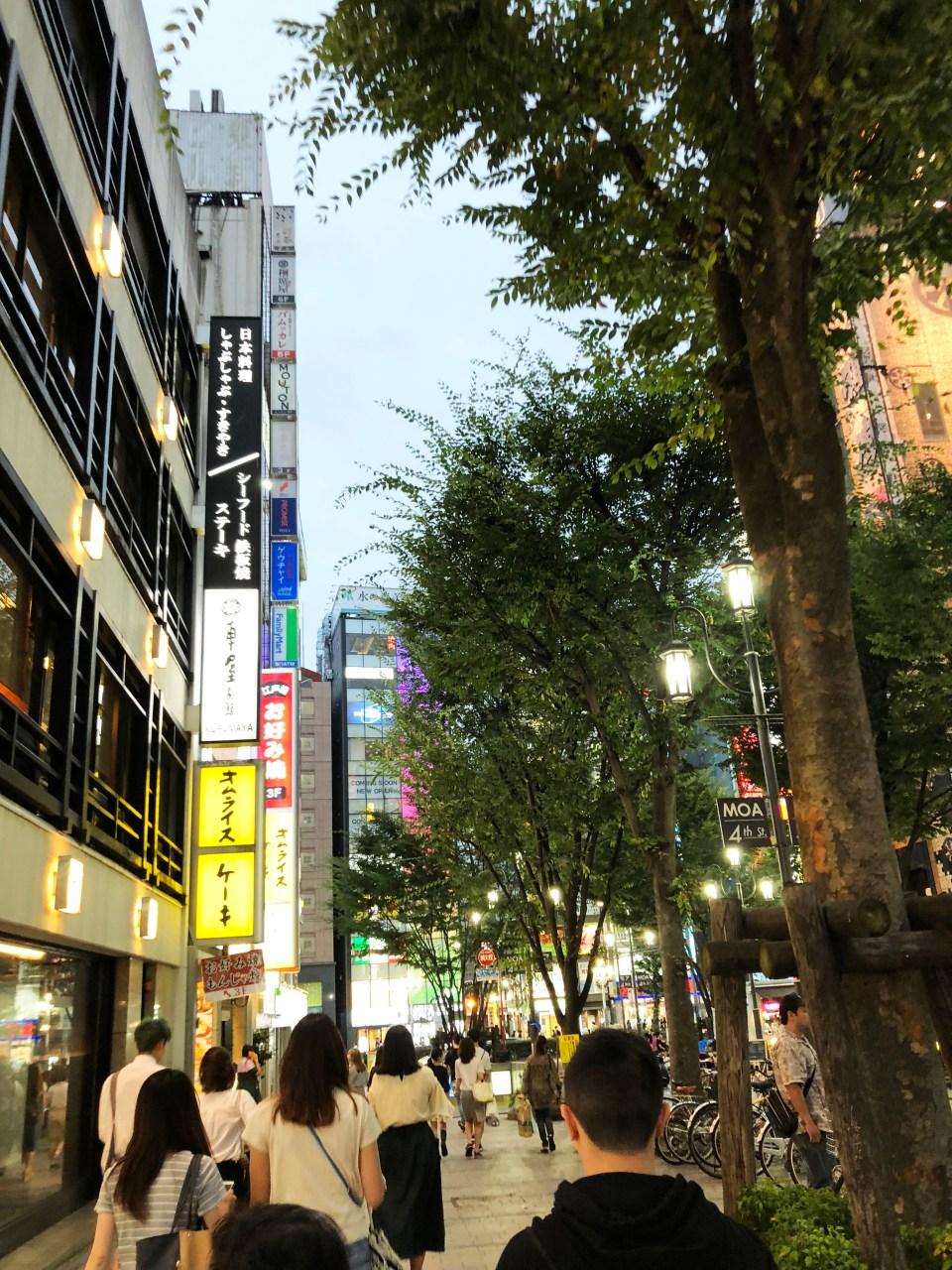 Shinjuku - night time 5