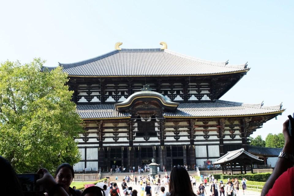 Todai-ji Temple 5