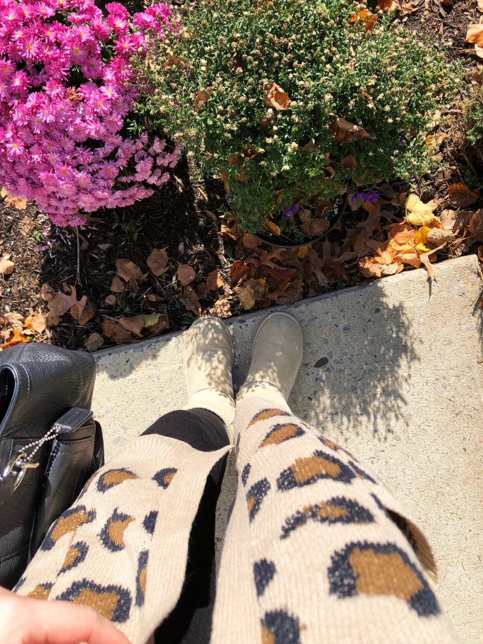 Leopard Cardigan 8