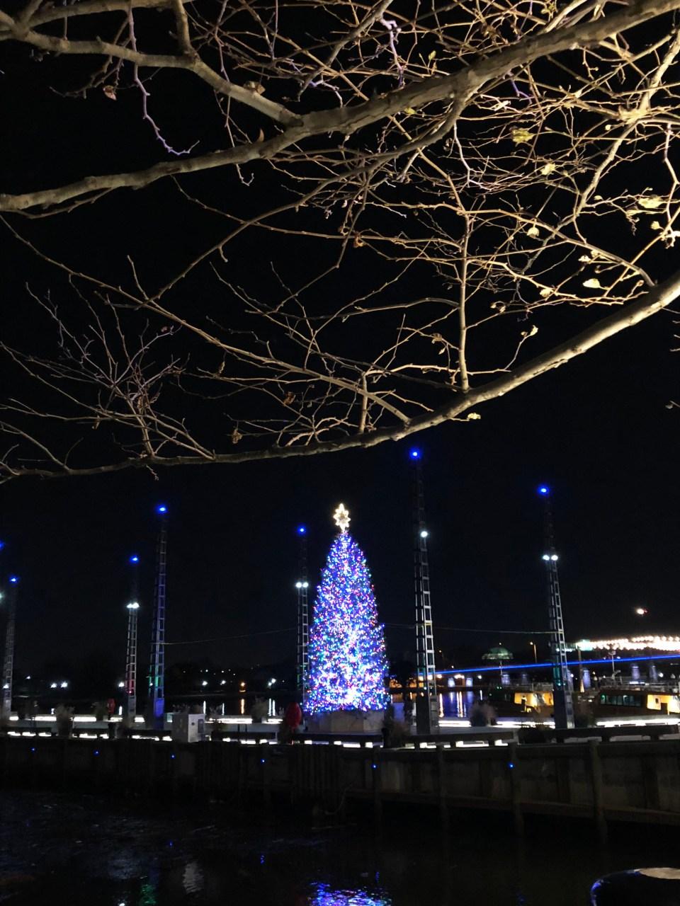 Washington DC Wharf 5