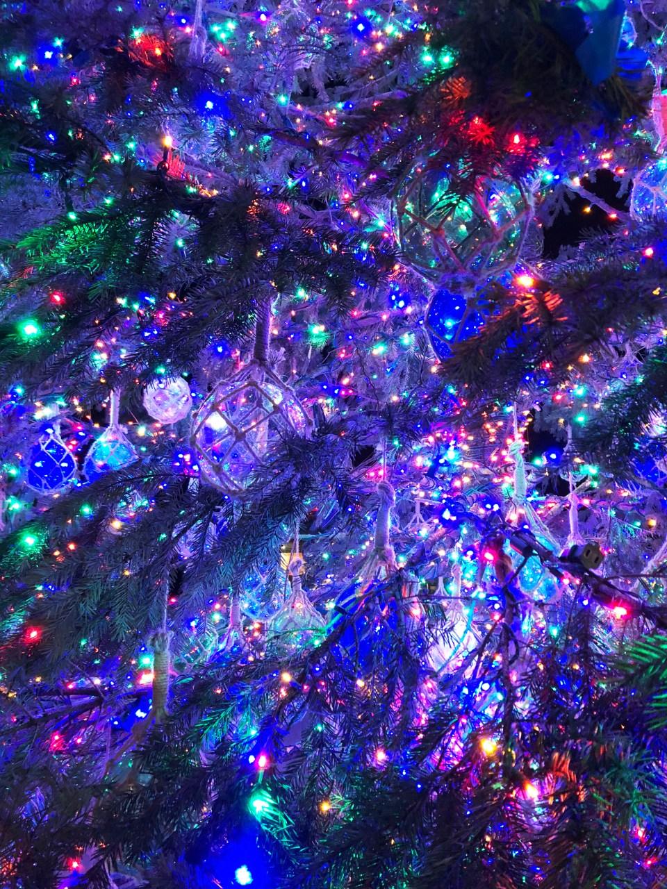 Washington DC Wharf - Christmas Tree 1