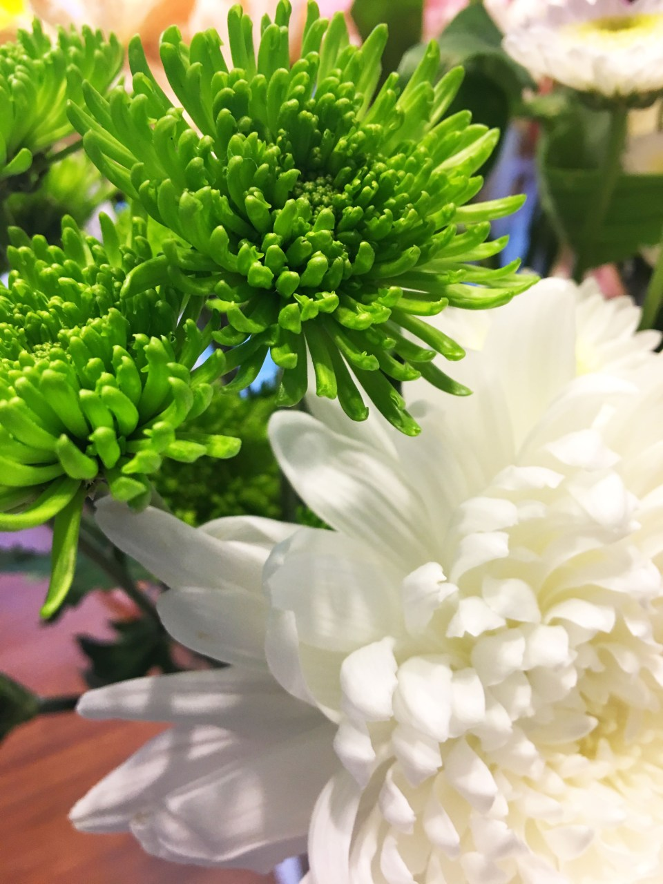 Green & White Flowers