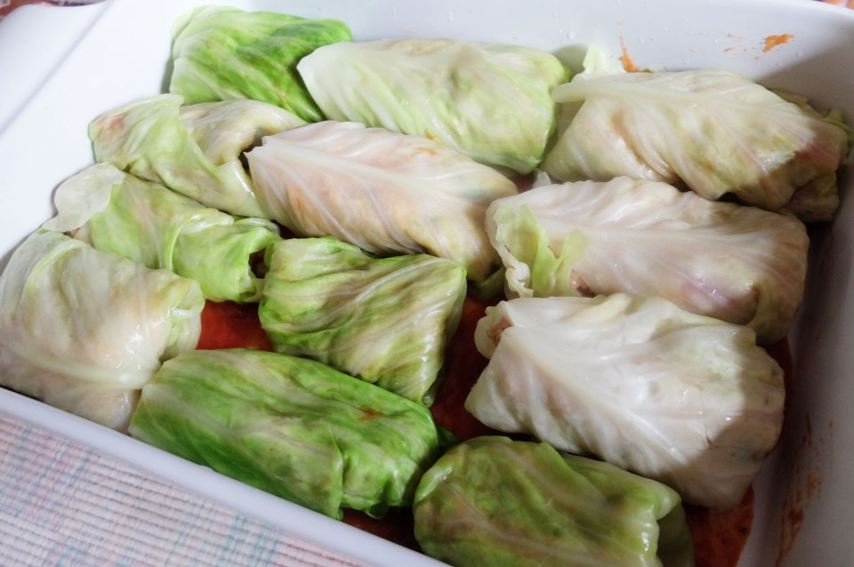 Cabbage Roll 1