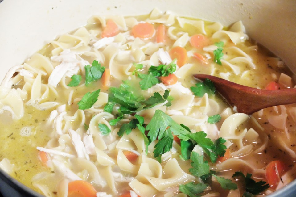 Chicken Noodle Soup 7