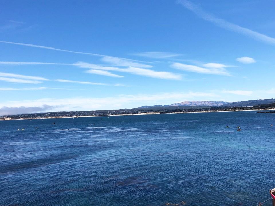 Monterey 12