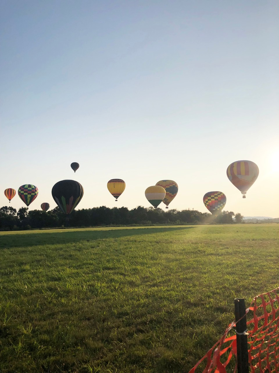 NJ Balloon Festival 2019 16