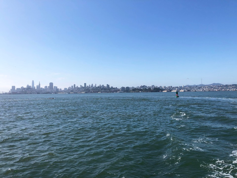 San Francisco Bay 5