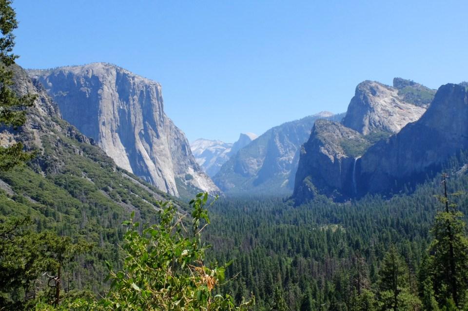 Yosemite National Park 15