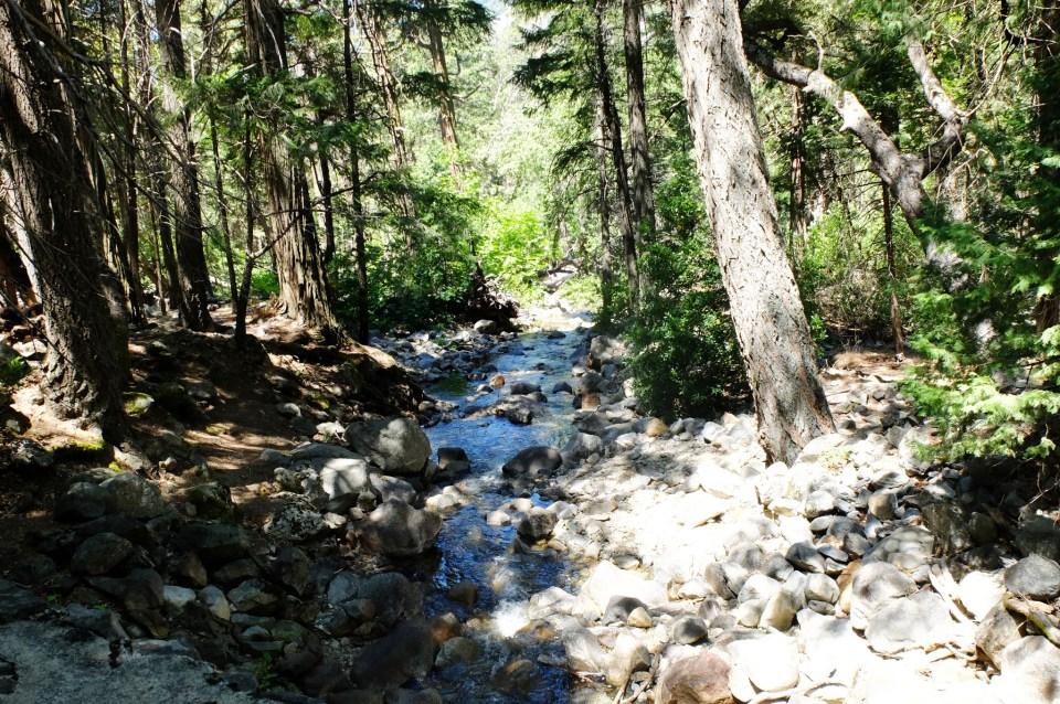 Yosemite National Park 17