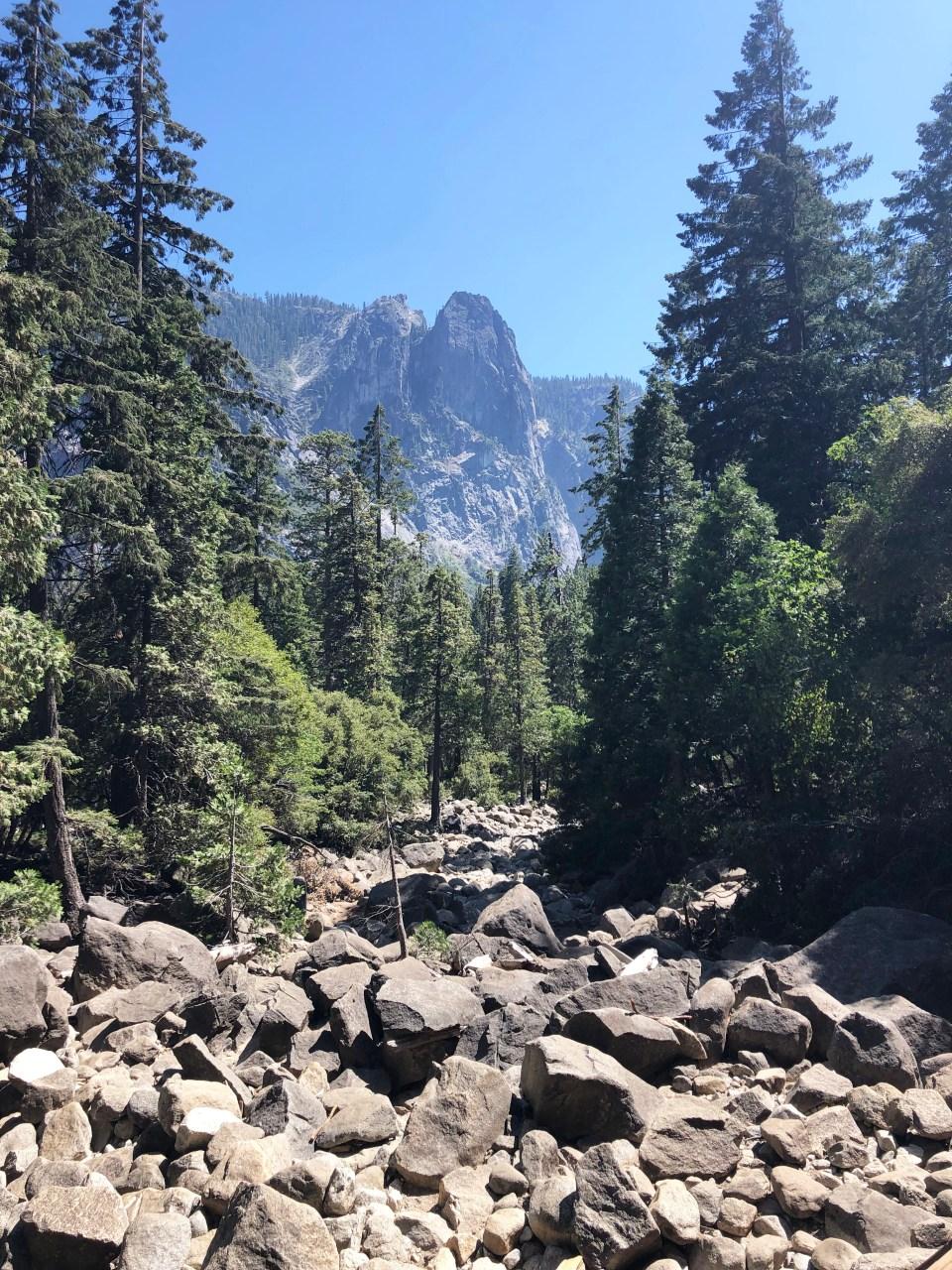 Yosemite National Park 8