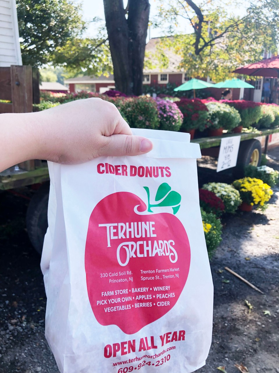 Terhune Orchards 5