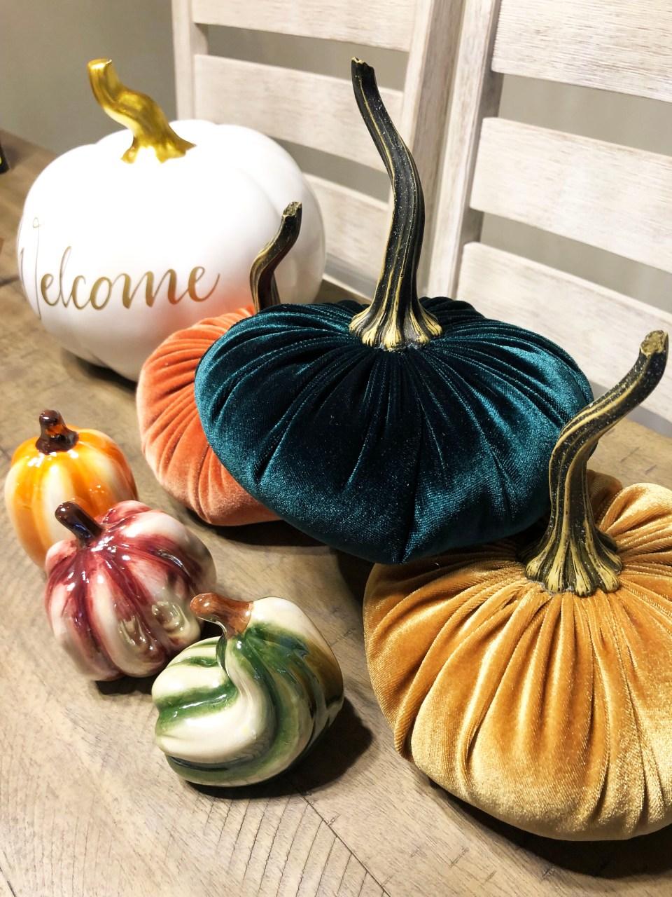 Velvet Pumpkins 9