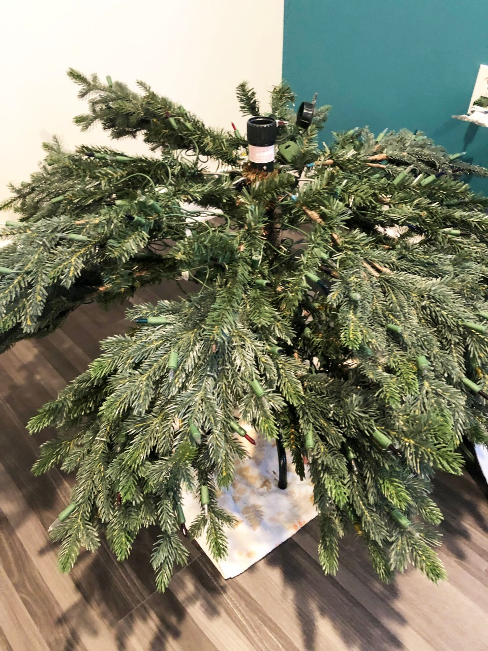 Balsam Hill Norway Spruce Narrow 1