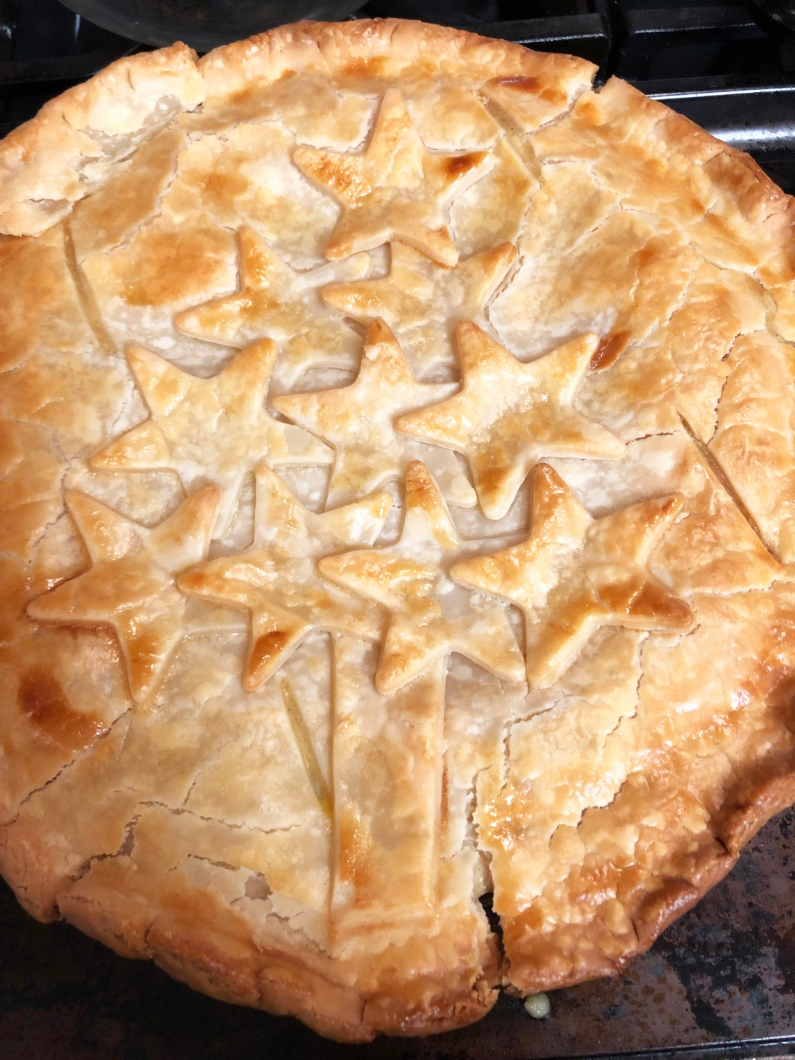 Christmas Chicken Pot Pie