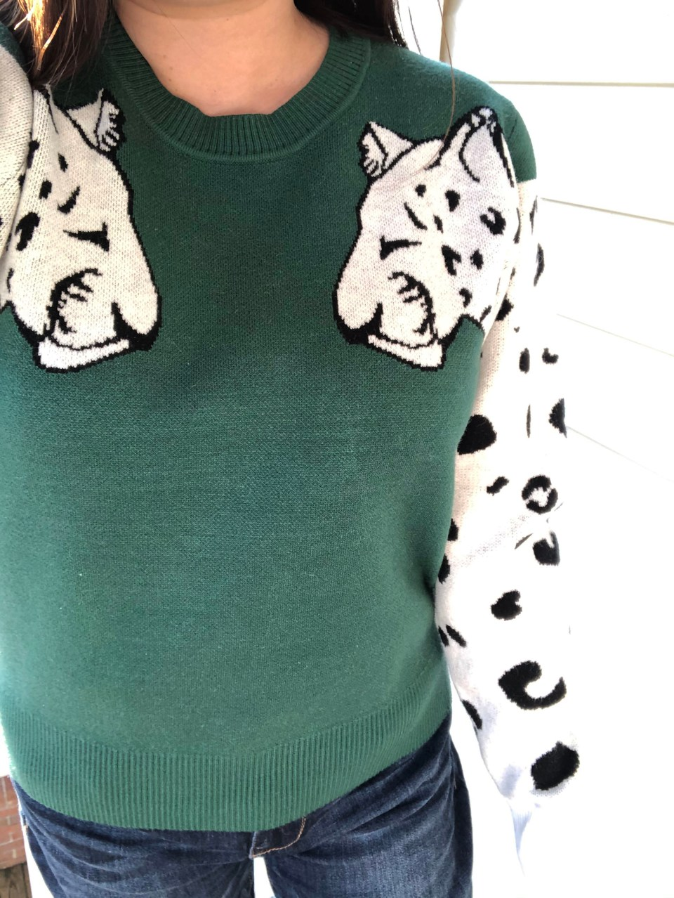 Leopard Sleeve Sweater 11