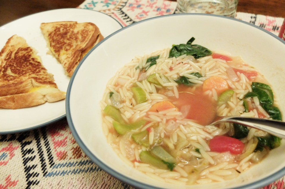 Orzo Vegetable Soup 10