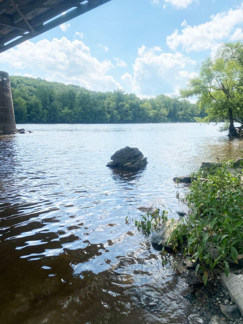 Delaware River Tubing 4