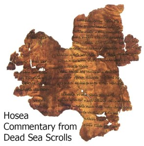 2014 Hosea Commentary Scroll