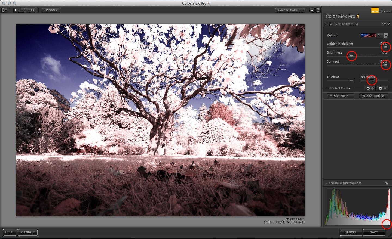 Color Efex Pro Infrared Film effect