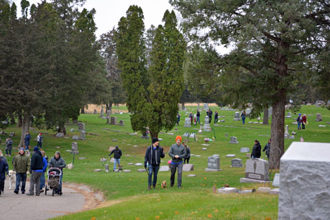 Strolling through the cemetery