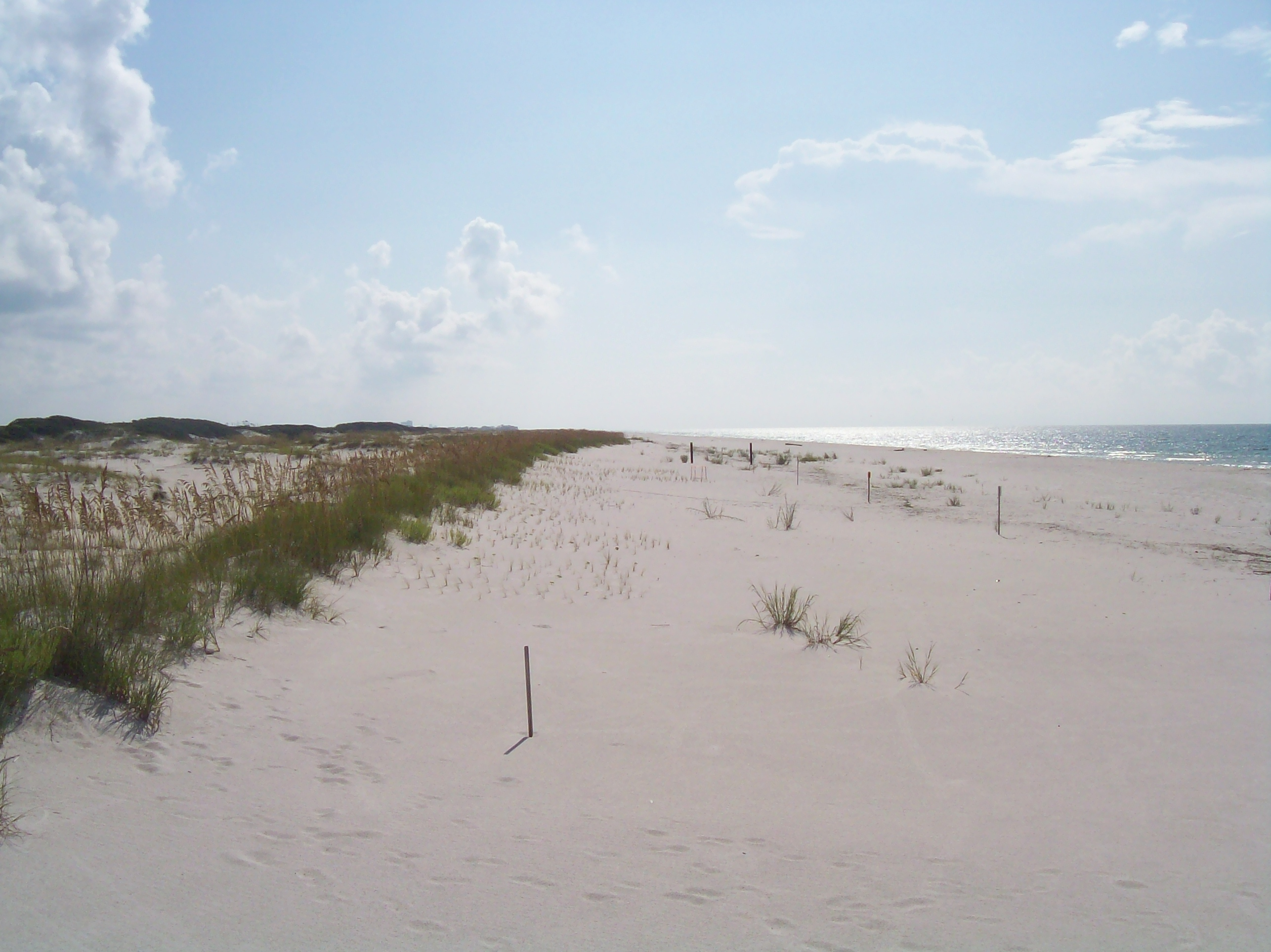 Bon Secoure National Wildlife Refuge at the Gulf of Mexico