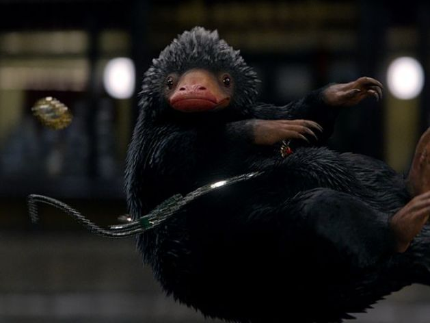 Niffler from Fantastic Beasts and Where to Find Them