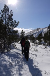 What's On in the Cairngorms - Invigorating Running and Walking