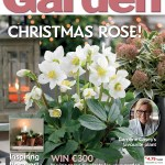 The Irish Garden magazine survey confirms gardening is good for the soul!