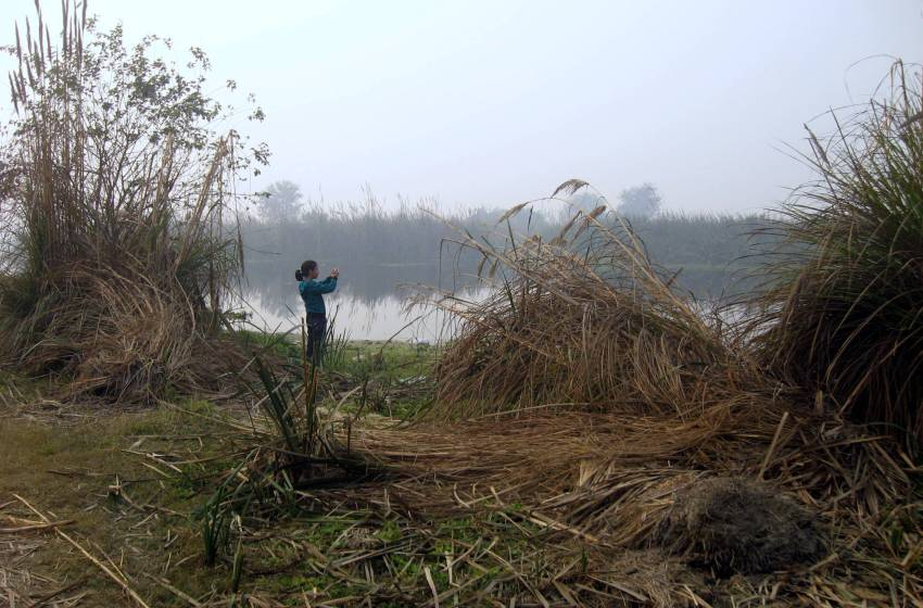 Govt notifies new rules for wetlands' conservation