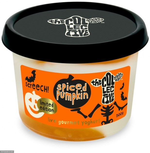 Limited edition - Spiced pumpkin live gourmet yoghurt