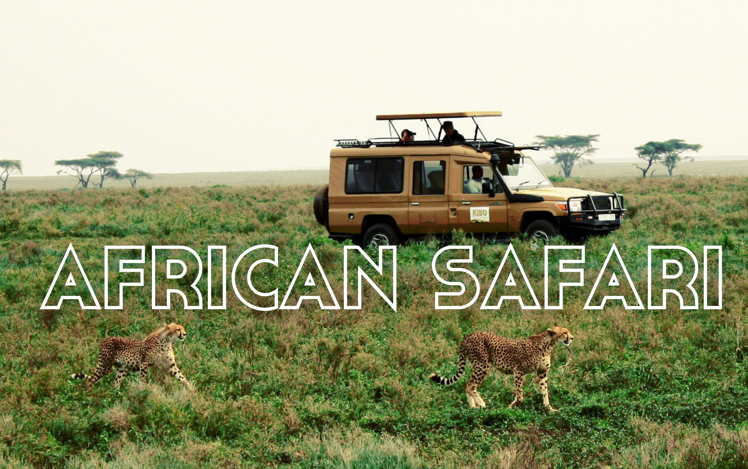 African safari tips