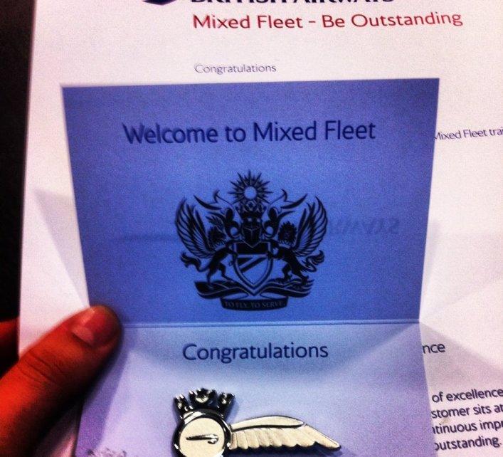 British Airways mixed fleet wings