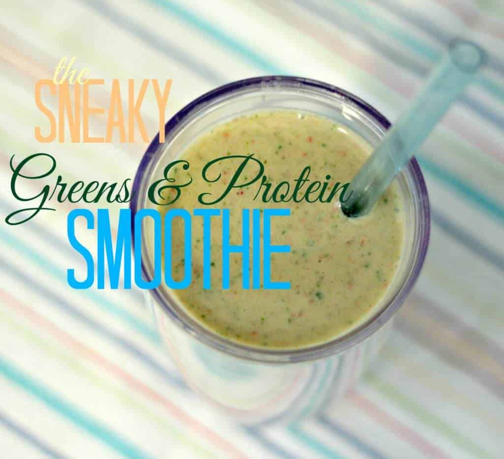 Smoothie-LAM-text