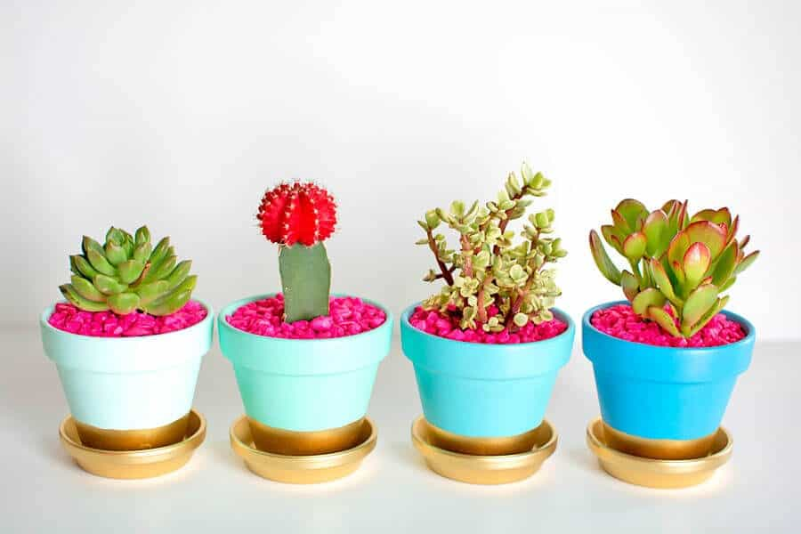 Gold-Dipped-Plant-Pots1