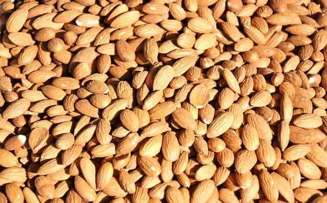 seeds-700014_640